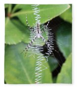 Zipper Spider Fleece Blanket
