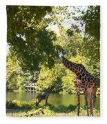 Zoo Landscape Fleece Blanket