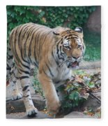 Chicago Zoo Tiger Fleece Blanket