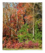 Autumn Colours In Great Smoky Mountains National Park Fleece Blanket
