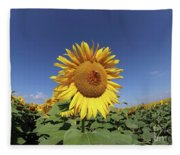 Bee On Blooming Sunflower Fleece Blanket
