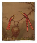 Brazilian Hummingbirds Fleece Blanket