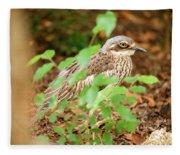 Bush Stone-curlew Fleece Blanket