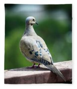 Dove On The Deck Fleece Blanket