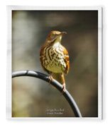 Georgia State Bird - Brown Thrasher Fleece Blanket