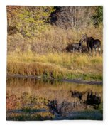 Moose At Green Pond Fleece Blanket