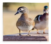 Pair Of Wood Ducks Fleece Blanket
