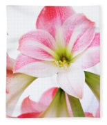 Pink Amaryllis Fleece Blanket