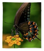 Spicebush Swallowtail On Lantana Blooms Fleece Blanket