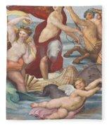 Triumph Of Galatea, Detail Fleece Blanket