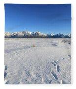 Turnagain Arm And Chugach Range From Hope Alaska Fleece Blanket