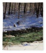 Winter Stream Near Hope On The Kenai Peninsula Alaska Fleece Blanket