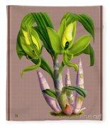 Orchid Vintage Print On Colored Paperboard Fleece Blanket
