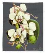 Orchid Old Print Fleece Blanket
