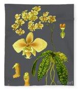 Orchid Old Print Fleece Blanket