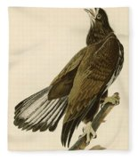 White Headed Eagle  Fleece Blanket