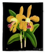 Vintage Orchid Print On Black Paperboard Fleece Blanket