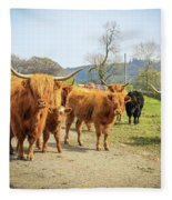 Highland Cattle  Fleece Blanket