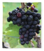 Purple Grape Bunches 17 Fleece Blanket
