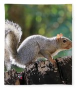 Squirrel Friend Fleece Blanket