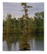 Tennesse Cypress In Wetland  Fleece Blanket