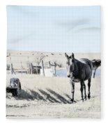 3 Mules Fleece Blanket