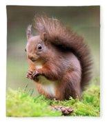 Red Squirrel Sciurus Vulgaris Fleece Blanket
