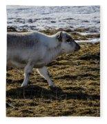Svalbard Reindeer Fleece Blanket