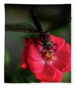 Dragonfly On A Flower Of A Red Rose. Macro Photo Fleece Blanket