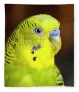 Portrait Of Budgie Birds Fleece Blanket