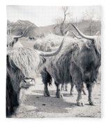 Highland Cattle  Fleece Blanket