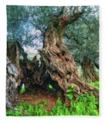 Old Olive Tree Fleece Blanket