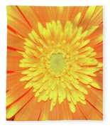 7289-yelow Gerber Fleece Blanket