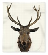 A Carved Wooden Red Deer Trophy With Red Deer Antlers, 19th Century Fleece Blanket