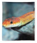 A Close Up Of A Ground Snake Fleece Blanket