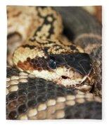 A Close Up Of A Mojave Rattlesnake Fleece Blanket