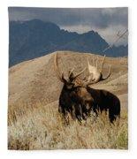 A Really Big Moose Fleece Blanket
