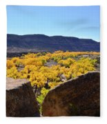 Gorgeous View Of Golden Cottonwood Trees In Canyon Fleece Blanket