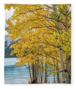 Abraham Lake Fleece Blanket