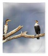 Adult And Juvenile Cormorants At Lake Naivasha Fleece Blanket