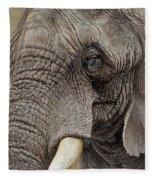 African Elephant Fleece Blanket by Alan M Hunt
