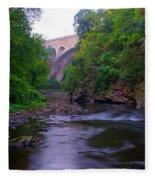 Along The Wissahickon At The Henry Avenue Bridge Fleece Blanket
