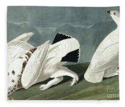 American Ptarmigan, Tetrao Mutus, White Tailed Grous, Tetrao Leucurus Fleece Blanket