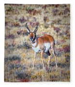 Antelope Buck 2 Fleece Blanket