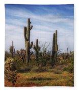 Arizona Dreaming Fleece Blanket