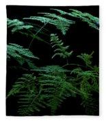 Asparagus Fern Fleece Blanket