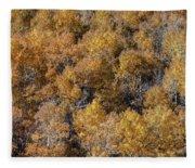 Aspen Autumn Leaves Fleece Blanket