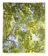 Aspen Canopy With Sun Flare Fleece Blanket