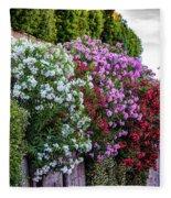 Aurelian Wall Fleece Blanket