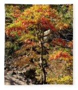 Autumn Color In Smoky Mountains National Park Fleece Blanket